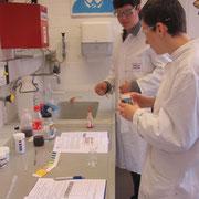 Der pH verschiedener Alltagsstoffe wird bestimmt..