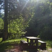 Les bords du lac d'Habère-Lullin