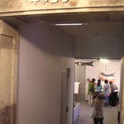 Gallery入口