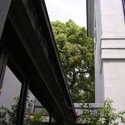 大倉山記念館