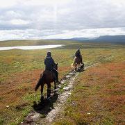rida  häst i lappland