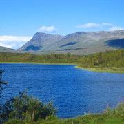 Vindelälvens naturreservat