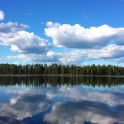 Blick von der Huskyfarm aus / Lapplands Drag