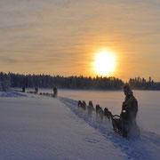 Tolle Sonnenuntergänge in Lappland