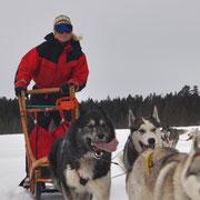 Gast mit eigenem Hundegespann
