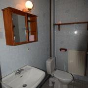 wc et lavabo du bas