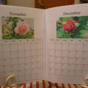 カレンダー。12か月薔薇づくしにしてみました❤