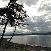 Sicht von unserer Campsite auf die Johnstone Strait