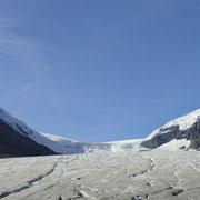 Athabasca Gletscher, Teil des Columbia Icefields