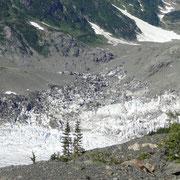 Ausläufer des Salmon Glacier