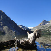 Bow Lake mit Bow Glacier