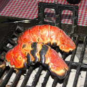 Lobster-Tails vom Grilll