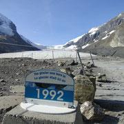 der Athabasca Gletscher hat sich auch schon recht zurückgezogen