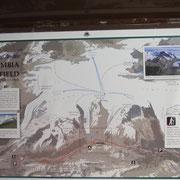 gesamtes Columbia Icefield, der Athabasca ist die kleine Zunge in der Mitte unten