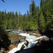 Stamp River, das ist doch mal ne Aussicht von der Campsite aus
