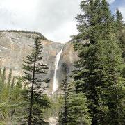 Takakkaw Falls, Yoho N.P.