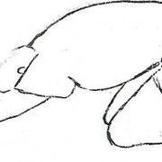 Etirement de la chaîne dorsale. Vous pouvez également poser les fesses sur les talons