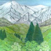 2016年5月 新緑と雪山