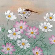 2011年10月 秋桜