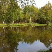 les étangs des Tourbières. Randonnées à Saint Germer de Fly