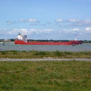 la Charente à Port des Barques