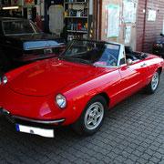 Alfa Romeo Spider (Rundheckspider)