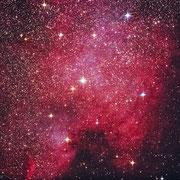Nordamerikanebel NGC 7000