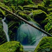 Wasserwald in Römerschlucht bei Velden