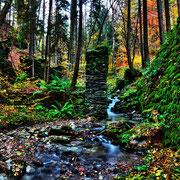 Metaubach beim Forstsee