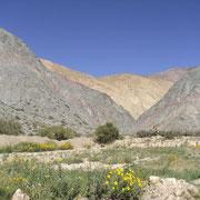 Quebrada Hurmahuaca