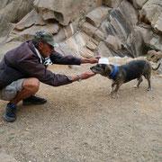 Die beiden Wanderführer von TimeforNature Fuerteventura
