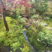 池に続く流れ