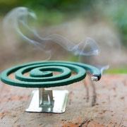 Eine Räucherspiralle als Mückenschutz.