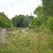Nachmal vom selben Standort, im Hintergrund der Prellbock des Hinterstellgleises