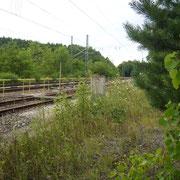 Blick zum noch vorhandenen Hinterstellgleiss  vom Standort des Draisinenschuppens