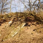 Überreste der Grundmauern des Stw1 (Bild Rico Schubert)