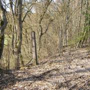Ein Zaunspfosten am ehemaligen Bm-Gelände (Bild: Rico Schubert)