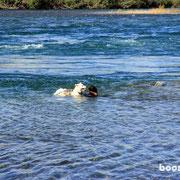 baden im Yukon-River