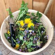 Gesammelte Wildkräuter und Blumen
