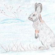 """Николай Рубцов. """"Про зайца"""". Рисовала Алина К., 4б класс"""