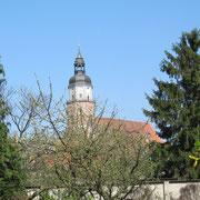 Blick vom südlichen Stadtwall auf die St. Marien Kirche