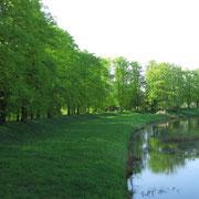 Schwarze Elster Höhe Stadtpark