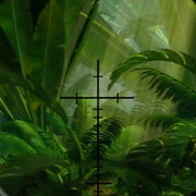 We had a jungle scene in Impy's Island 1 but decided to rework all elements/add a few new ones since the old stuff just didn't fit into the look of the vegetation on this movie anymore. I surfaced this entire scene except characters and rifle.