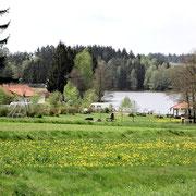 Campingplatz Reingers