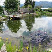 50Plus Campingpark Schwimmteich