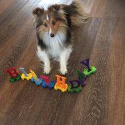 Amber im September 2020, Happy Birthday!