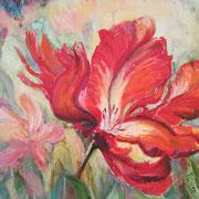 Tulpen,  Ö, l40 x 50 cm