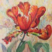Tulpe, Öl, 30 x 30 cm