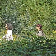 Dans la jungle de Vincennes