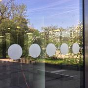 Glasdekorfolie als Auflaufschutz für Glastüren